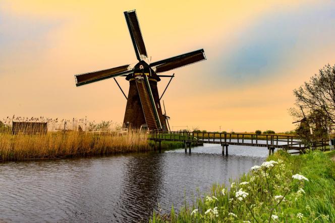 荷兰留学环境图片
